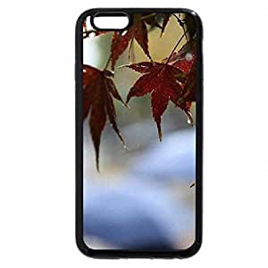 iPhone 6S / iPhone 6 Case (Black) Autumn