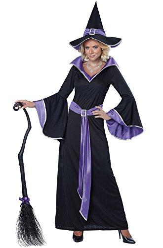 Halloween Costume Photo Contest 2019 (California Costumes Women's Incantasia, The Glamour Witch,Black/Purple,X-Large)