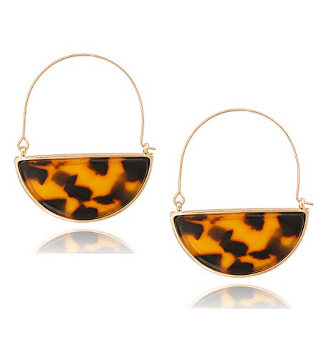 Acrylic Earrings For Woman Circle Resin Hoop Earrings Mottled Fan Earrings Stud Earring (Dark Leopard) ()