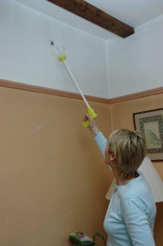 Spider catcher – L'attrape insectes qui permet de s'en débarrasser sans les tuer