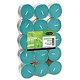 USA Tealight Garden Rain Tealights, 30-Pack