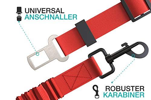 STUCH ® Universeller Bungee Sicherheitsgurt für Hunde & Katzen - Passend für alle Hunderassen & Autotypen (Rosa)