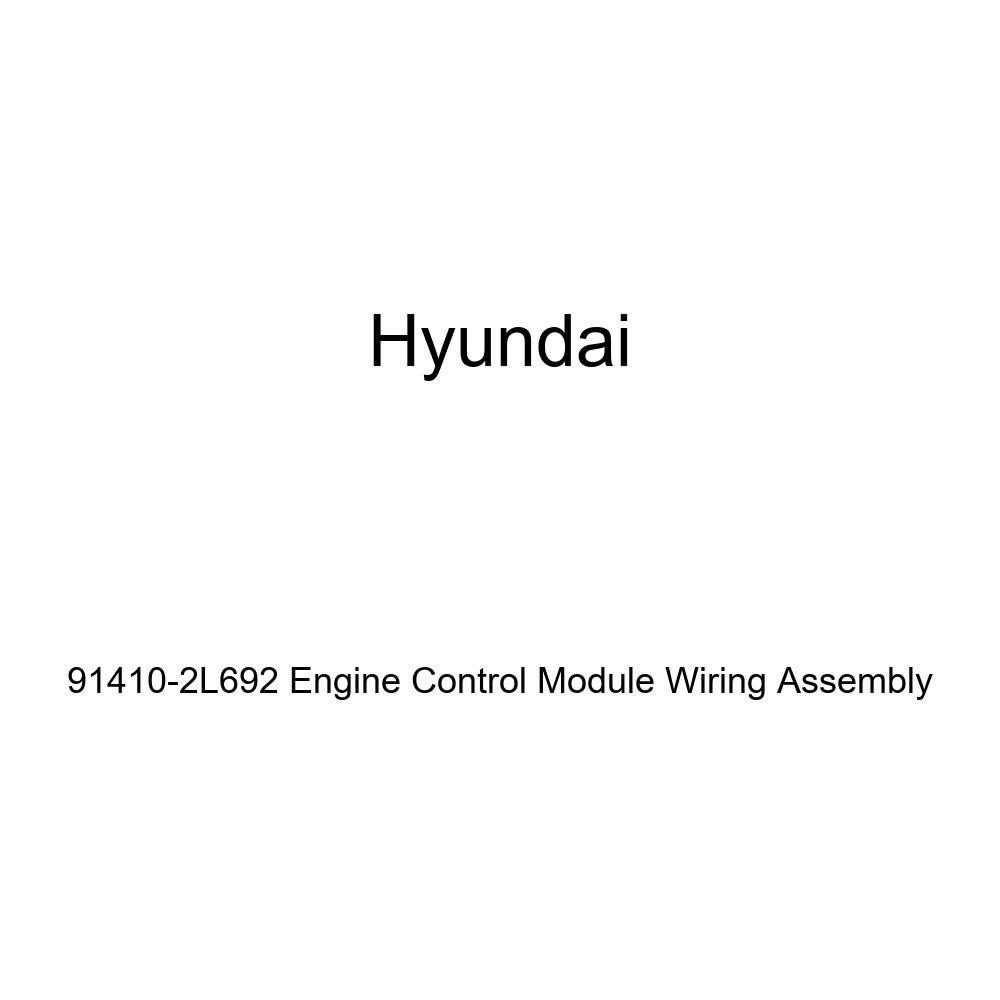 Genuine Hyundai 91410-2L692 Engine Control Module Wiring Assembly