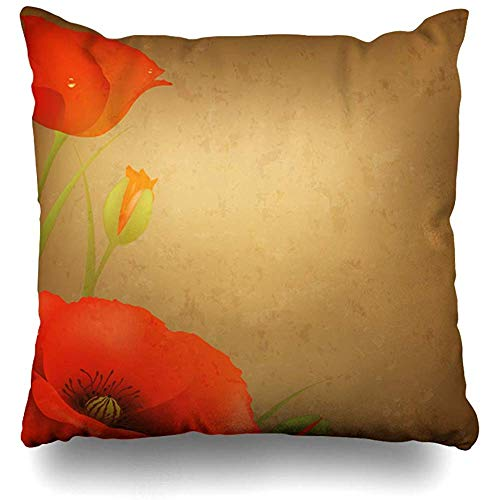 Throw Pillow Cover Blossom Brown Field Vintage Red Poppy Nature Lawn Blue Wildflower Aging Ancient Antique Design Sky Home Pillow Case Square Size 18 x 18 Inches Zippered Decor Pillowcase