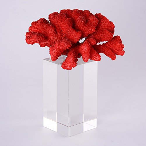 BRLIGHTING Coral Decoration, Simple Fire Coral Sculpture with Crystal Bases Tabletop Modern Decor Accents Home Office Collection Best Creative Gifts (L4.5 xW5 xH10, Red) (Coral Home Accents)