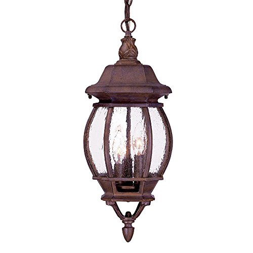 Acclaim 5160BW/SD Chateau Collection 3-Light Outdoor Light Fixture Hanging Lantern, Burled Walnut (Chateau Outdoor Pendant)