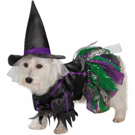 Zack & Zoey Scary Witch Costume for Dogs, 16''/Medium