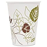 Dixie DXE9PPATH Pathways Polycoated Paper Cold Cups, 9 oz., 2400 Per Carton
