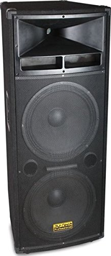 DJTECH VEGAS218 -Watt - Channel Unpowered Speaker Cabinet by DJ Tech