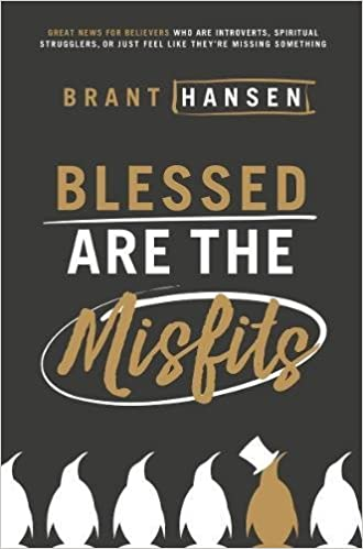Image result for brant hansen blessed are the misfits