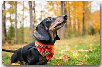 "Cute Love Baby Dachshund Dog Mat Floor Mat Door Mat Neoprene Rubber Non Slip Backing Machine Washable (23.6""x15.7"",L x W)"