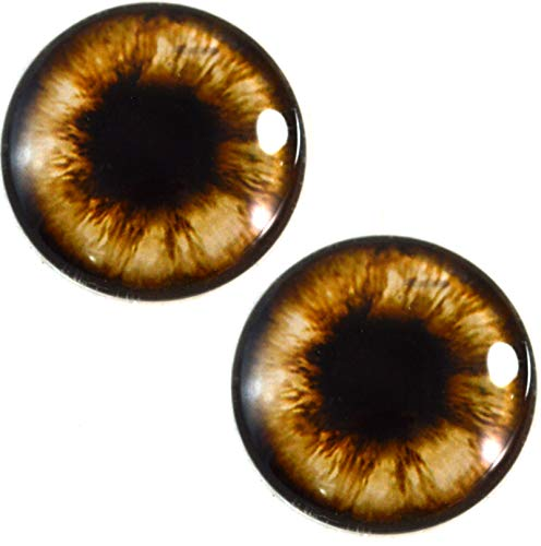 (30mm Brown Teddy Bear Glass Eyes Realistic Animal Pair for Art Dolls, Sculptures, Props, Masks, Fursuits, Jewelry Making, Taxidermy, and More)