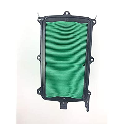 Honda Talon 1000 OEM Air Filter 17215-HL6-A00: Automotive