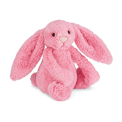 Fluffy Bunnies Pink (Jellycat Bashful Sorbet Bunny Stuffed Animal, Medium, 12 inches)