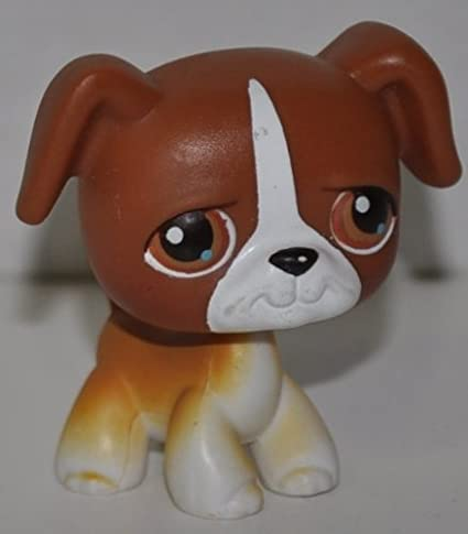 Amazon Com Boxer 40 Dog Brown White Accents Brown Eyes 2004 Littlest Pet Shop Retired Collector Toy Lps Collectible Replacement Single Figure Loose Oop Out Of Package Print Toys Games