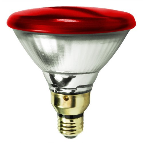Colored Halogen Flood Light Bulbs in US - 9