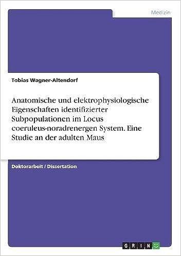 Anatomische Und Elektrophysiologische Eigenschaften Identifizierter ...
