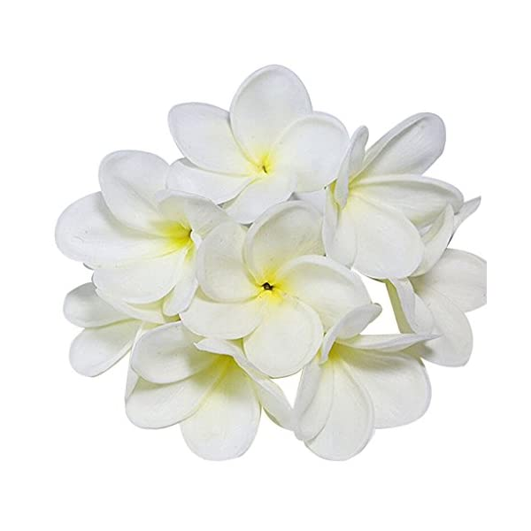 Winterworm Bunch of 10 PU Real Touch Lifelike Artificial Plumeria Frangipani Flower Bouquets Fake Wedding Cake Home Party Decoration (White)