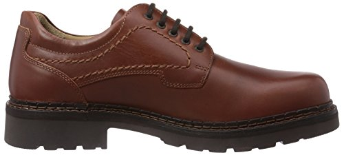 new style 75ae9 677aa camel active Classic, Men's Lace-Up Flats