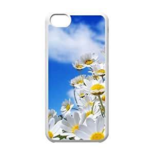 Daisies Customized Case for Iphone 5C, New Printed Daisies Case