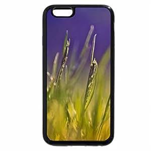 iPhone 6S Case, iPhone 6 Case (Black & White) - Dream garden XII.