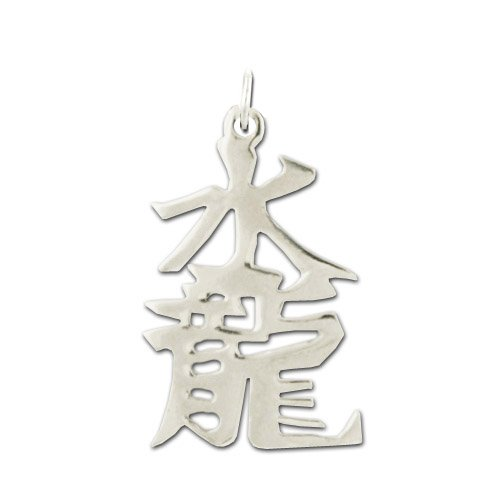 Jewelry Adviser Chinese Kanji Symbols Sterling Silver Water dragon Kanji Chinese Symbol Charm