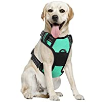 PAWABOO Dog Harness, No Pull Pet Vest Harness Adjustable Reflective Oxford Soft Padded Easy Control Handle for Outdoor Walking, Suitable for Small, Medium, Large Dogs, Lake Blue