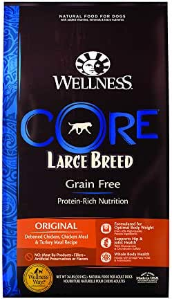 Dog Food: Wellness CORE Large Breed