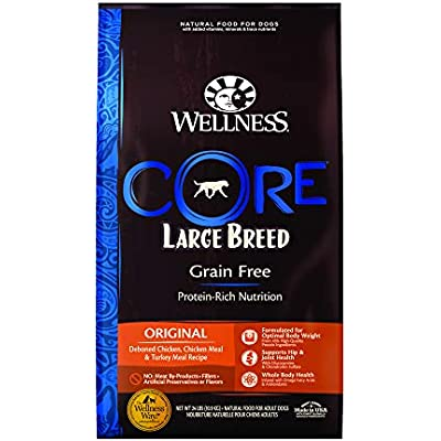 Wellness Core Natural Grain Free Dry Dog Food Large Breed