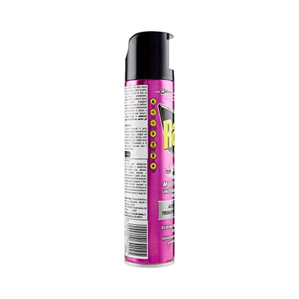 Raid Spray Multinsetto, Insetticida Spray, 1 Confezione da 300 ml 2 spesavip
