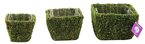 Super Moss 55000 Deco Square Basket, Small, Pack of 3