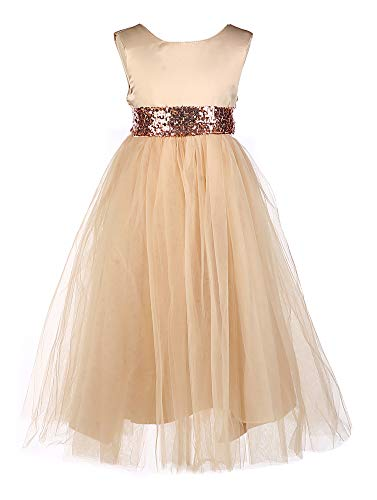 - Tutu Dreams Ball Gown Dresses for Girls Kids Costume Brown Champagne Elegant Sequin Waist Tie Birthday Party (Champagne, 3-4 Years)