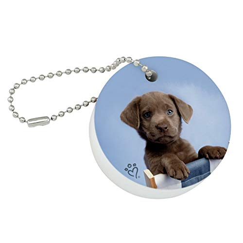Graphics and More Chocolate Lab Labrador Deckchair Lounge Chair Round Floating Foam Fishing Boat Buoy Key Float Keychain