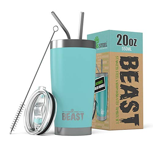 Small Thermal Metal Brush - BEAST 20oz Tumbler Insulated Stainless Steel Coffee Cup with Lid, 2 Straws, Brush & Gift Box by Greens Steel (20 oz, Aquamarine Blue)
