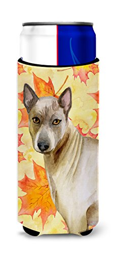 Caroline's Treasures BB9941MUK Thai Ridgeback Fall Decorative Hugger, Slim Can, Multicolor by Caroline's Treasures