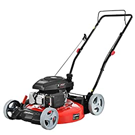 PowerSmart DB2321C Lawn Mower, Red and Black 77 Powered by 161 cc engine delivering the right amount of power in a compact, lightweight package Easy pull starting. 21-Inch Steel mowing deck 2-In-1 side discharge and mulching capability allows you to spread grass clippings to the side, returning key nutrients to your lawn so your grass can grow healthy and thick