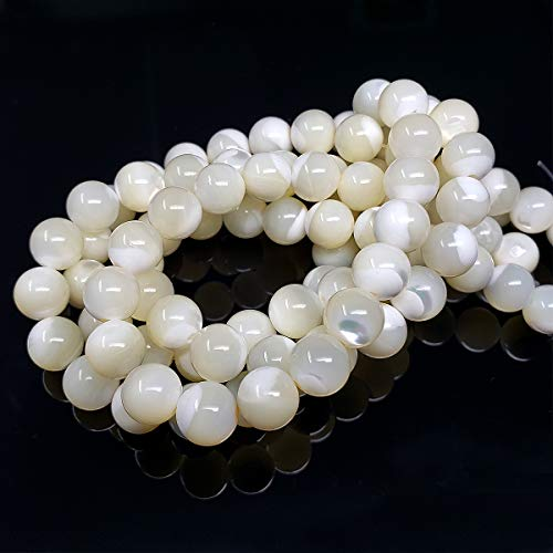 Chengmu 8mm White Horseshoe Shell Beads for Jewelry Making Natural Gemstone Round Loose Spacer Beads Assortments Supplies Accessories for Bracelet Necklace with Elastic Cord