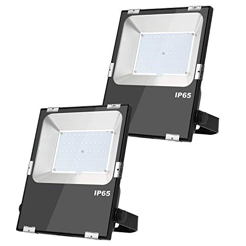 (2 PCS DC 24V 12V LED Flood Light 6500K 50W 5500LM Daylight White Outdoor Security Floodlight Lamp, IP65 Outside Waterproof)