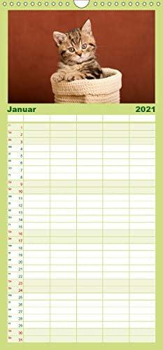 Tierkinder klein und süß - Familienplaner hoch (Wandkalender 2021, 21 cm x 45 cm, hoch)