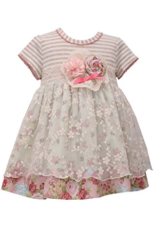 Shabby Chic Clothing - Bonnie Jean Baby Girl Vintage Floral Shabby Chic Dress (12m-4t) (24 Months)