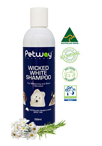 Whitening Whitener - PETWAY Petcare Wicked White Whitening and Stain Removal Shampoo – Natural Whitening Shampoo for Puppy, Free of Phosphates and Parabens, ph Balance Dog Shampoo Removes Stains, Dirt and Odour - 250ml