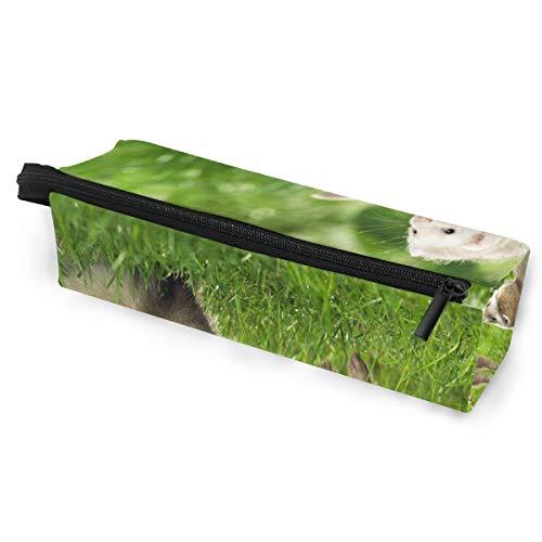 Glasses Case Ferrets Hurones Animal Grass Multi-Function Zippered Pencil Box Makeup Cosmetic Bag for Women/Men