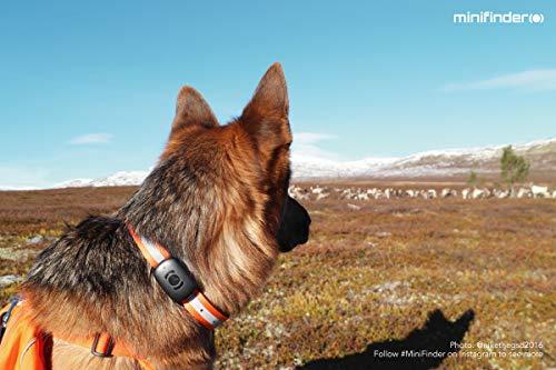 minifinder® Atto Dog GPS Tracker 5