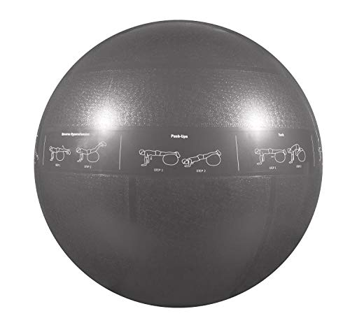 Professional Stability Ball by GoFit by GoFit