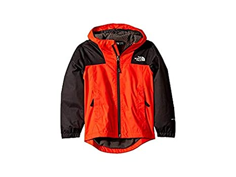 The North Face Kids Boys Warm Storm Jacket (Little Kids/Big Kids)