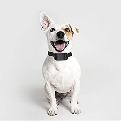 Ortz Bark Collar [FREE Leather Collar] with Beep, Vibration and Shock Mode - Rainproof Remote Control Dog Training for Small, Medium & Large Dogs - Best Rechargeable Electric Bark Collar [Black]