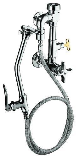 KOHLER K-13925-CP Bedpan Washer, Polished ()
