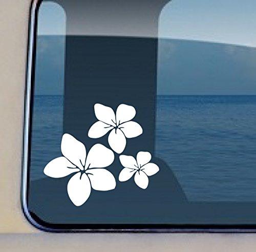 Creation Flower (Aloha Maui Creations Plumeria Trio Decal Hawaiian Flower Vinyl Sticker 4.25 by 4.8 inch)