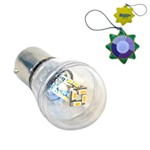 HQRP BA15s Bayonet Base 16 LEDs SMD 3014 LED Omni Bulb Clear Cover Warm White for #93 #1141 #1156 RV Interior / Ceiling / Porch Lights Replacement + HQRP UV Meter