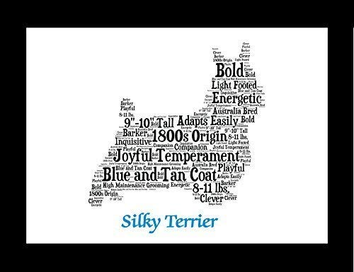 Silky Terrier Dog Wall Art Print - Personalized Pet Name - Gift for Her or Him - 11x14 matted - Ships 1 Day